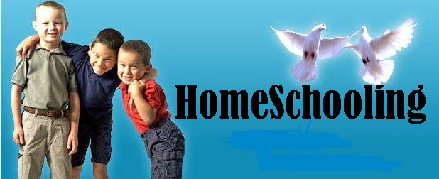 homeschooling large family